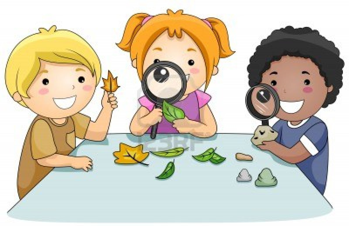 8129516-a-small-group-of-kids-studying-leaves-through-magnifying-glasses